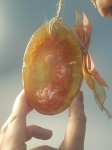 Глицеринови сапуни 2013-2018